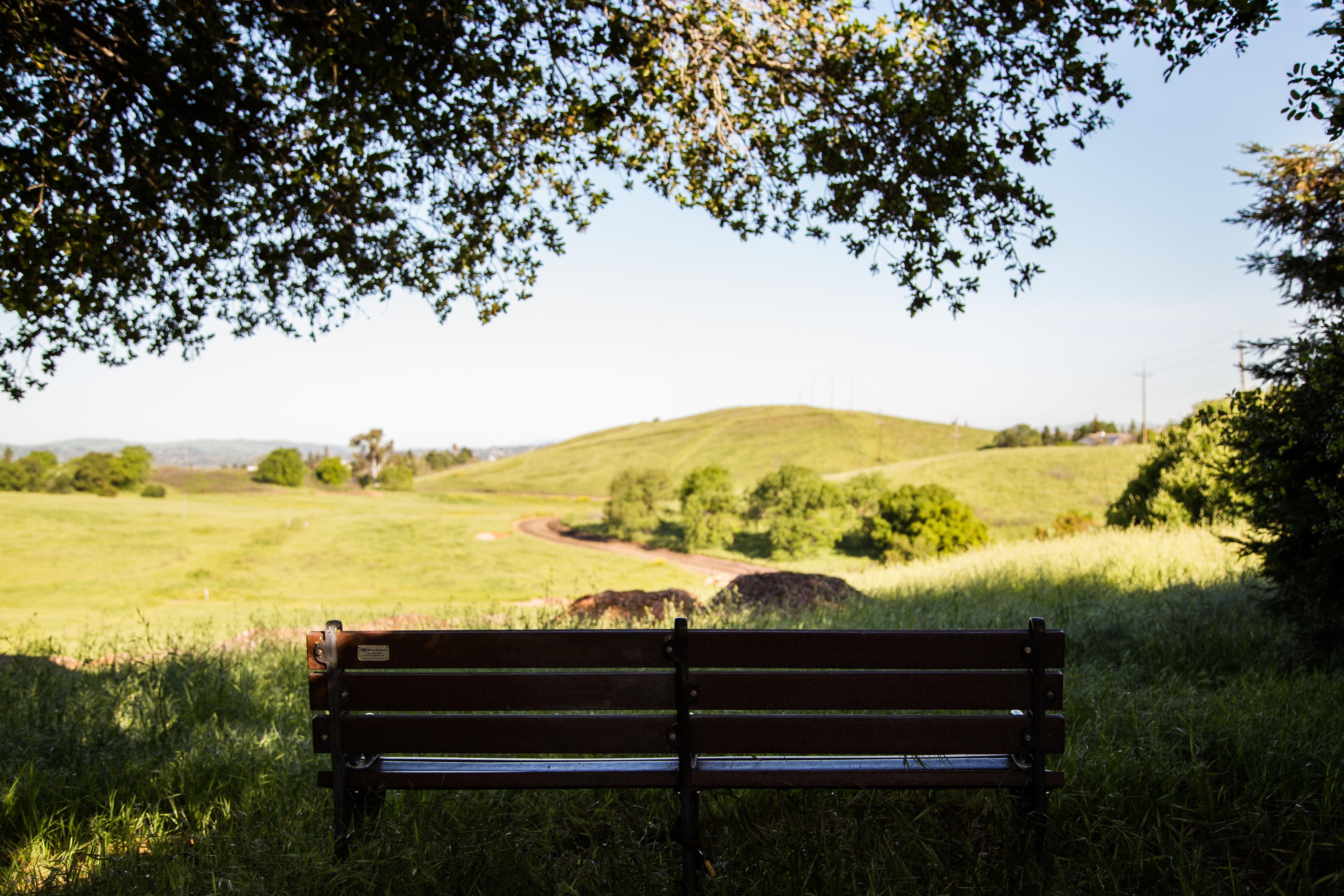 Bench overlooking open space