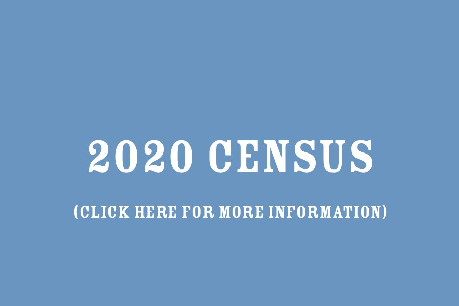 Information on the 2020 Census