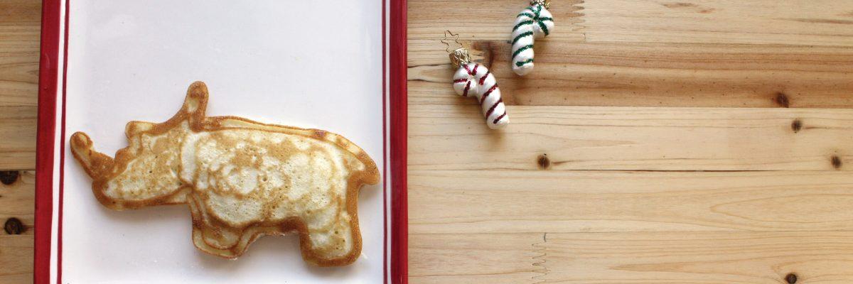 VA Zoo rhino pancake image