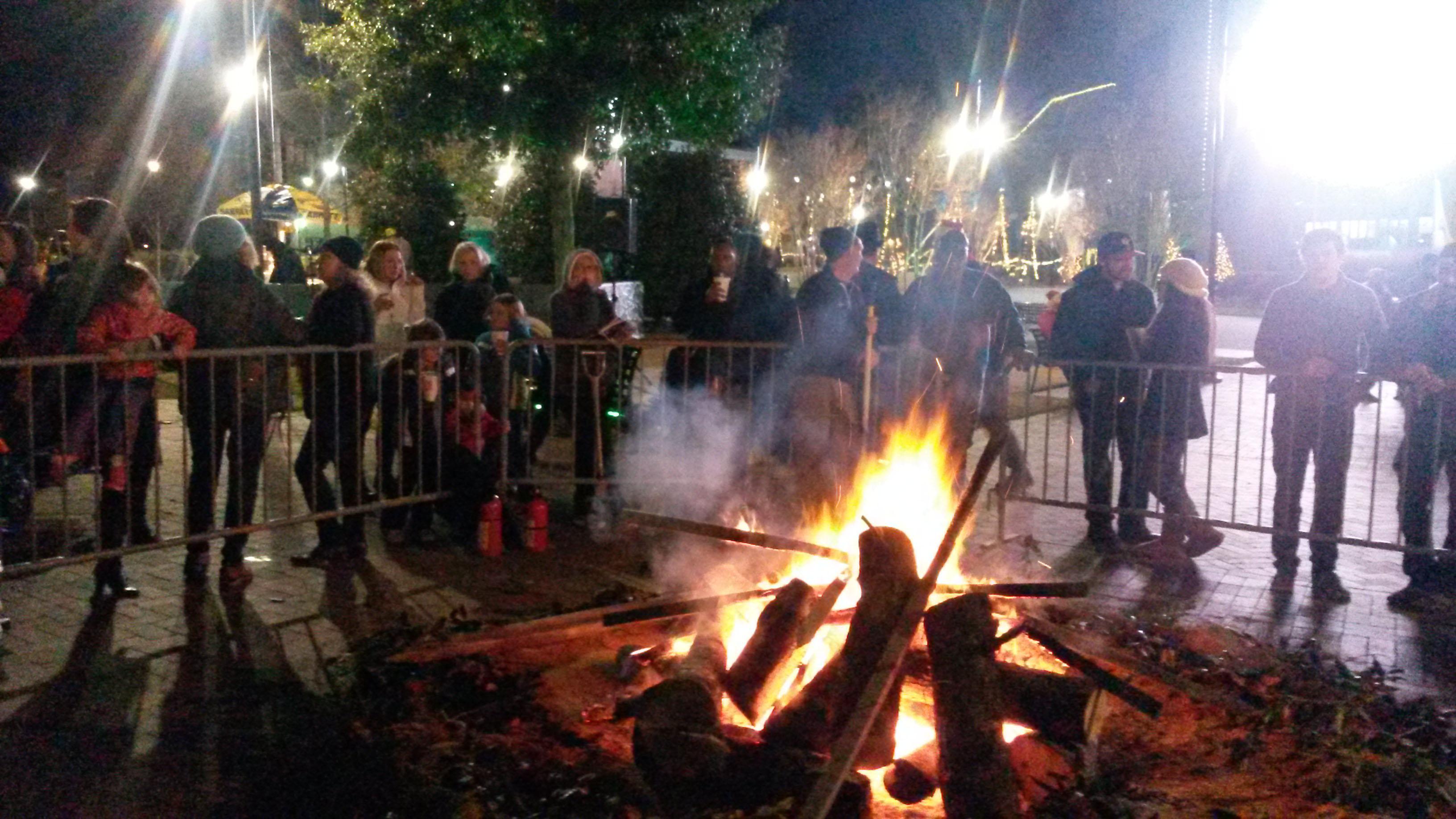 Burning yule log image