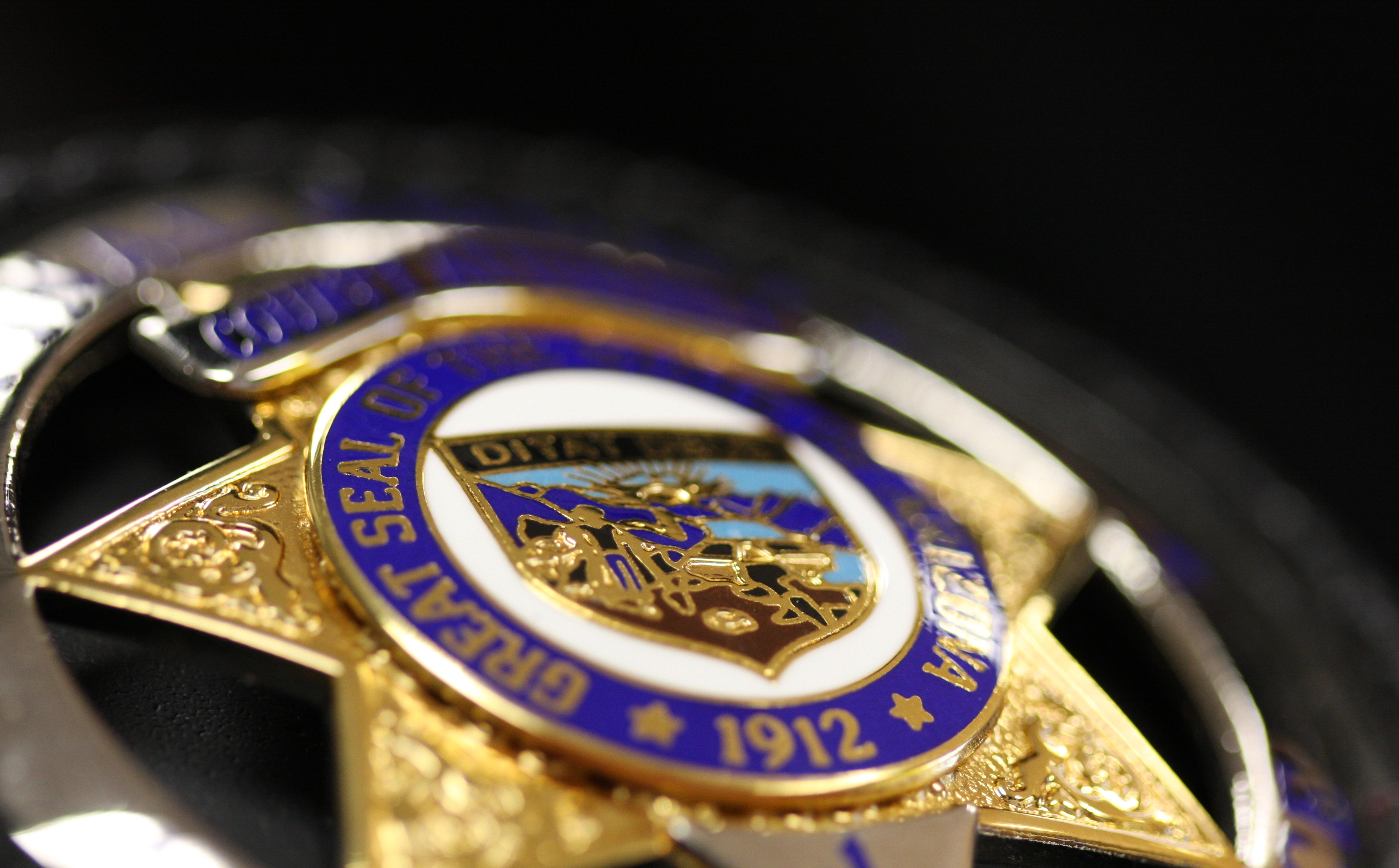 Law mandates public access to criminal statistics