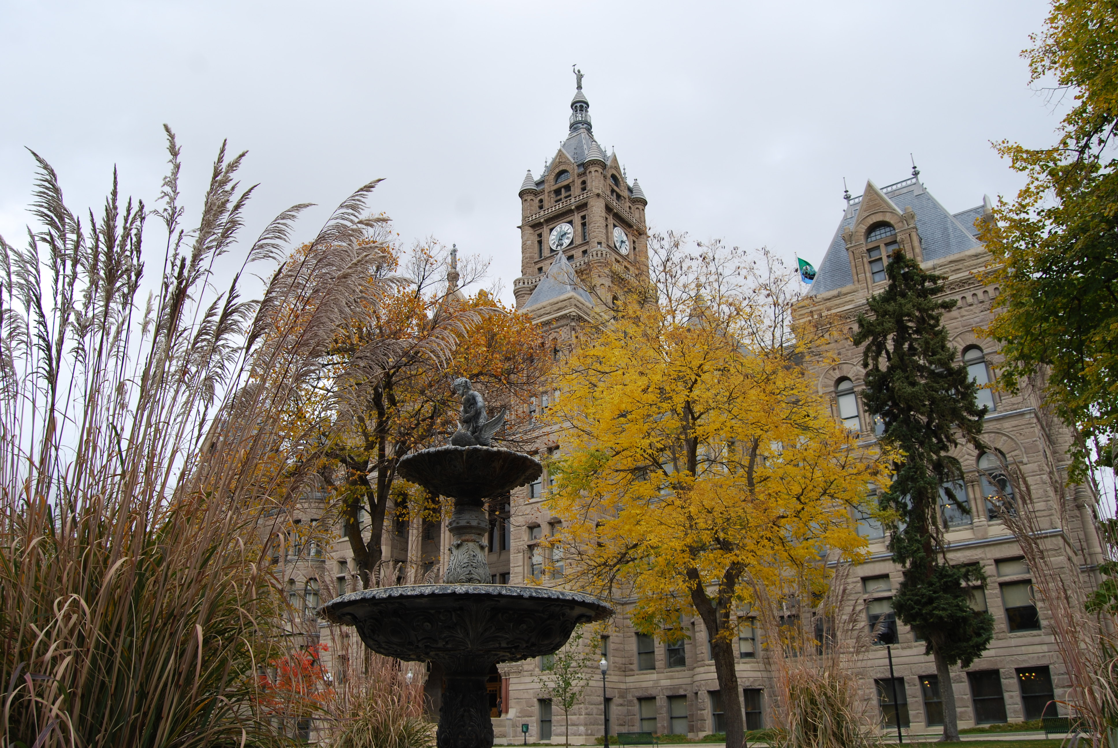 Fall at the City and County Building