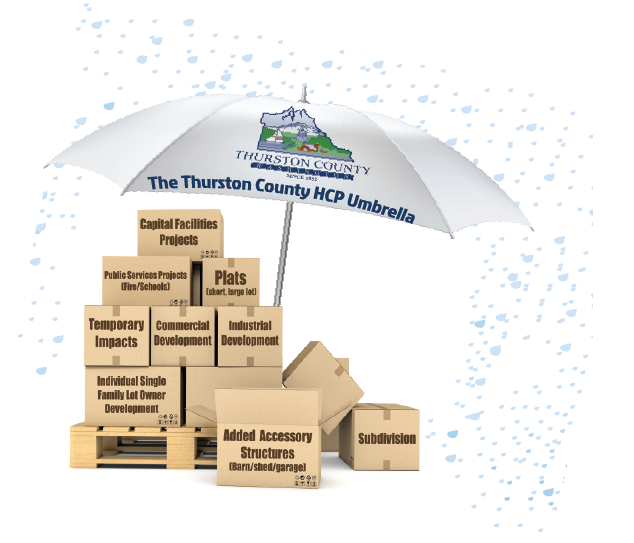 Image of an umbrella with boxes below it representing the activities covered in the HCP