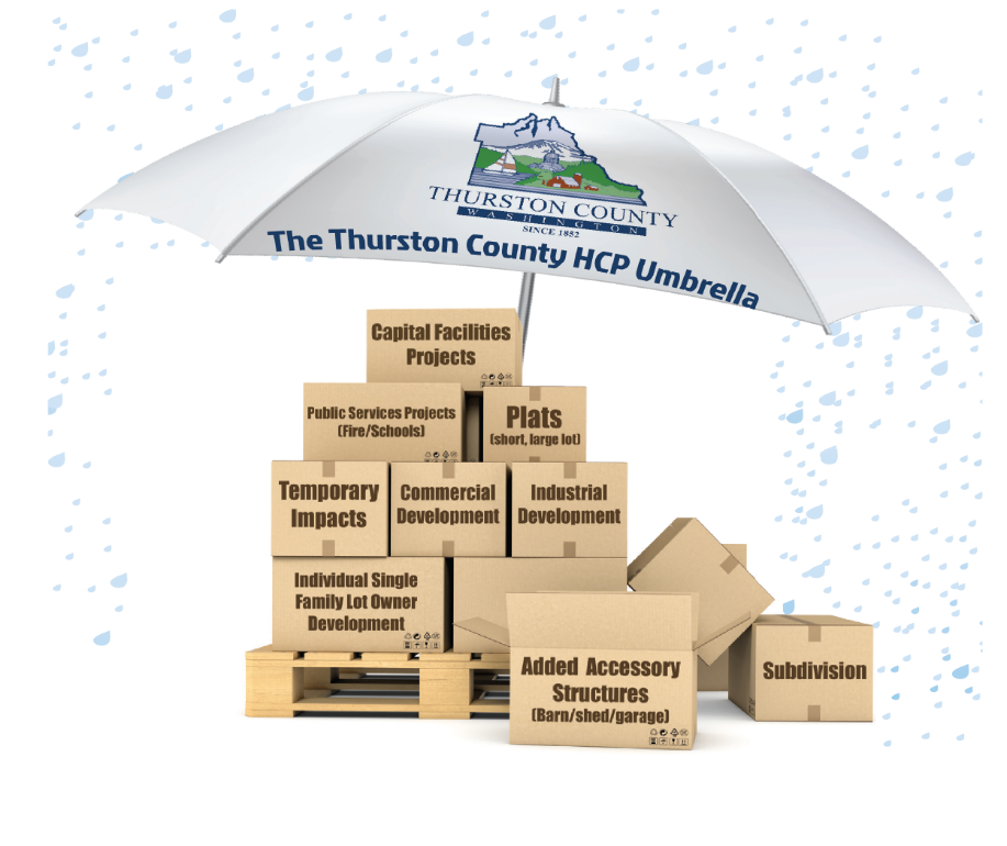 Image of an umbrella symbolizing the HCP over boxes of what the umbrella HCP will cover